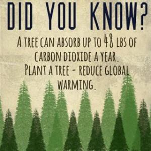 global warming #carbon dioxide