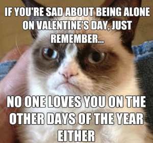 Animal Memes – Valentine's Day Grumpy Cat