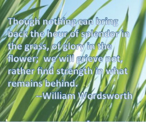 Splendor in the grass...