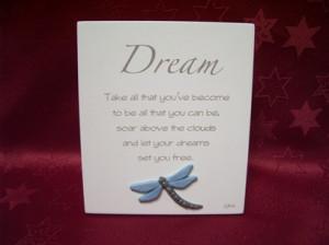 Splosh Dragonfly Poem - Dream