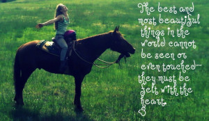 Love My Horse Quotes