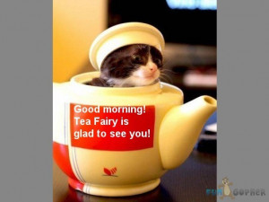 Funny-Animals-Good-morning-Tea-Fairy-is-glad-to-see-you.jpg (34 KB)