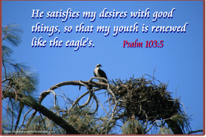 Psalm Inspirational Bible Quotes Verse