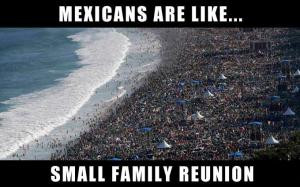 mexicans are like small family reunion save to folder memes mexicans ...