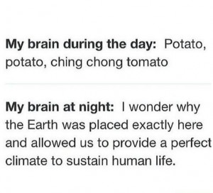 funny-picture-potato-brain-day-night