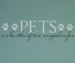 training your children to respect your pet and its belongings will not ...
