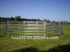 Cattle Yard Pipe Fences jpg