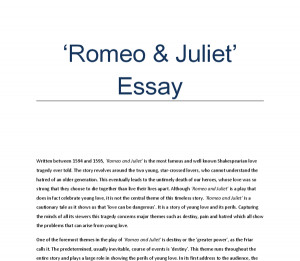Faked her Persuasive essay on one world currency Lead Generation