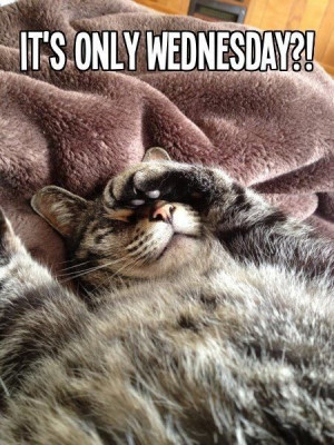 It's Only Wednesday Pictures, Photos, and Images for Facebook, Tumblr ...