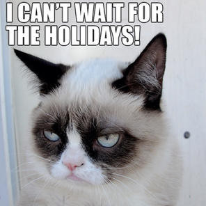 top photos 21 submissions to grumpy cat rules