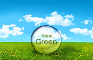 Invest In Green Products That Are Good for the Environment and Human ...