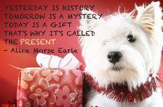 present alice morse earle more smile quotes morse earl alice morse