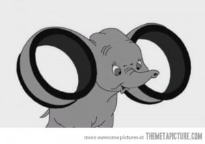 Funny photos funny Dumbo big ears