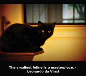 quote-cat-davinci