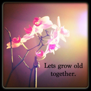 Lets grow old together.