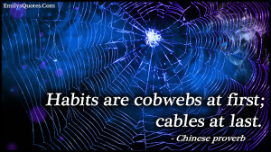 EmilysQuotes.Com - habits, cobwebs, cables, wisdom, proverb, Chinese ...
