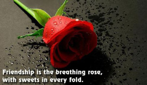 Hindi Romantic Quotes of Rose Day