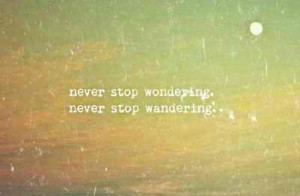 Travel Quotes And Sayings Travel quote: never stop