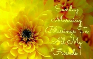 Have Blessed Day Smiles Mark