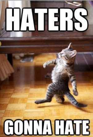Haters Gonna hate – Funny Cat