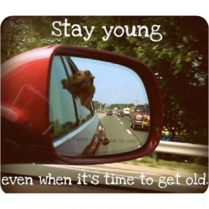 Stay young even when it's time to get old quote