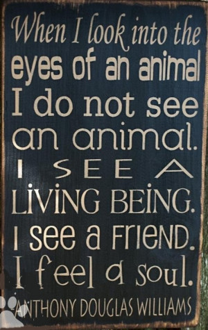 animals #pets #friends #family