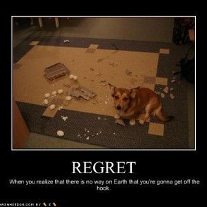 Funny Quotes about Regret