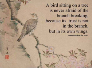 ... afraid of the branch breaking, because its trust is not in the branch