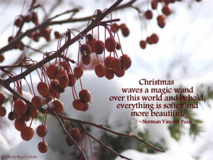 Christmas quote by Norman Vincent Peale Photo by Rigel Celeste Gregg