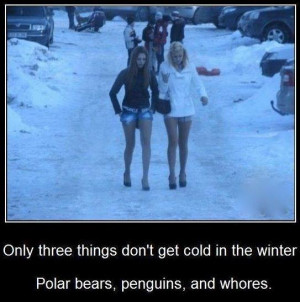 funny-picture-winter-cold-whores