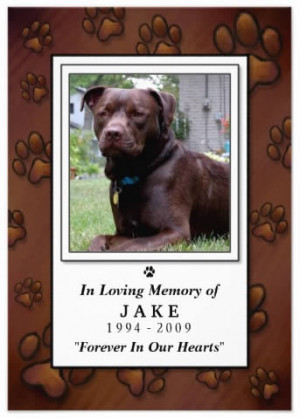 Chocolate Brown Paw Prints Photo Pet Remembrance