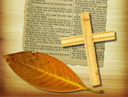 Bible Verses About How To Get Rich Quick