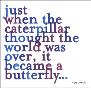 ... the caterpillar thought the world was over, it became a butterfly