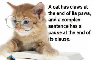 Kitty cat grammar? Solid as a hammer!