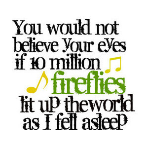 Cortney's Fireflies Lyrical quote:) USE!