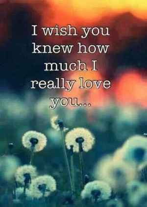 wish you knew how much I really love you...and that you felt the ...