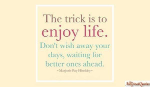 Fun Quotes About Enjoying Life