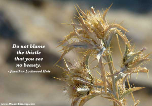 Do not blame the thistle that you see no beauty.