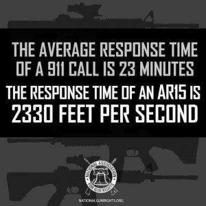 Pro Gun Quotes And Phrases