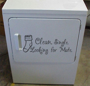Clean, Single, Looking for Mate- Laundry Room vinyl Decal Sticker ...
