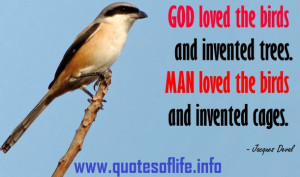 Quotes Of Life God loved the birds and invented trees Man loved the