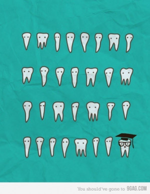 Wisdom Teeth.