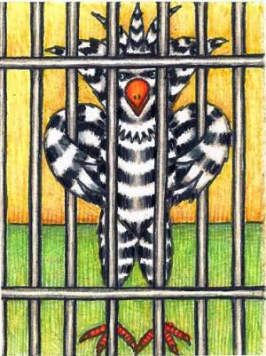 Jailbird Picture