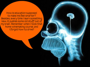 quotes about education. Homer Education