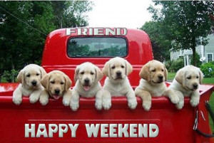 Happy weekend   via Facebook