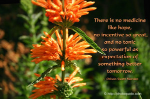 There is no medicine like hope, no incentive so great, and no tonic so ...