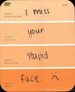 Funny Quote - I Miss Your Stupid Face.