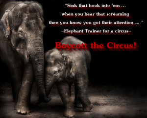 Stop Circus Animal Abuse