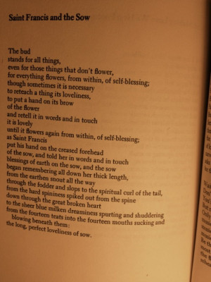 St. Francis and the Sow by Galway Kinnell