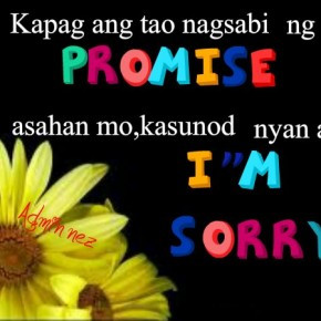 Promise Quotes and Sorry Quotes | Papansin Kaba?